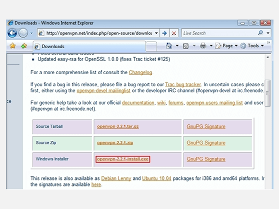 Setup OpenVPN on Windows | 8 OpenVPN download