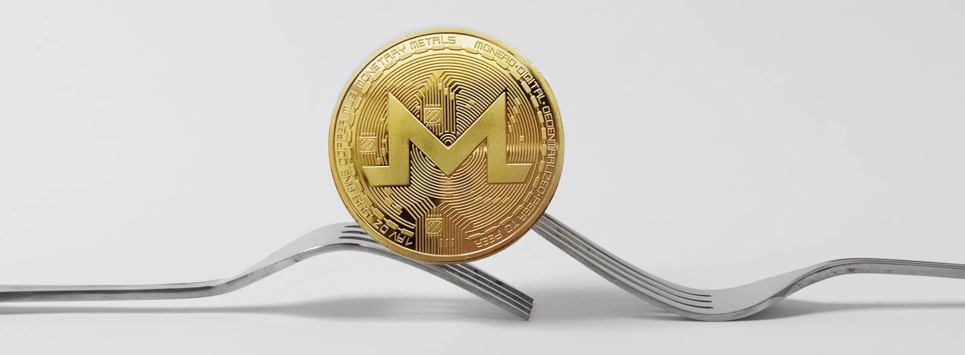 Guide on Privacy Coins monero